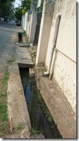 Gutter with stagnant water, smells