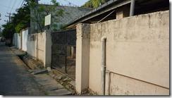 Animal Welfare & Protection Assoc - Colombo (13)