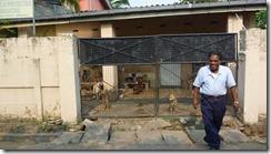 Animal Welfare & Protection Assoc - Colombo (6)
