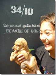 Colombo Beach - w Puppy (28)