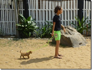 Colombo Beach - w Puppy (41)