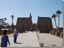 Luxor Tour Sphinx lined walk btwn Luxor and Karnak (1)