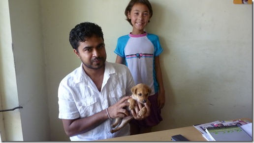 Puppy Health Exam - Dr. Thilakarathna (2)
