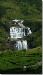 Tea plantation & St. Claire waterfall