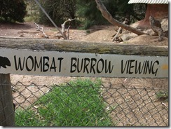 Victor Harbor Urimburrim Wildlife Park (34)