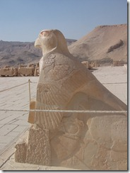 West Bank Nile Tour - Hatshepsut's Temple (69)