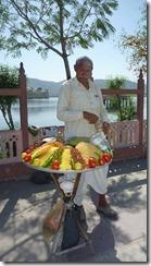 Jaipur streets (6)