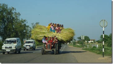 To Jaipur Women on Straw Tractor (1)