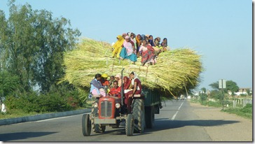 To Jaipur Women on Straw Tractor (2)