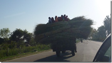 To Jaipur Women on Straw Tractor (4)