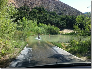 Camping at Los Oso by Santa Barbara - enroute to our campsite ... we had to cross this.  We let the bicyclist go first