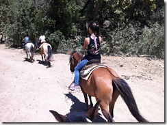 Horseback riding on the trails in the hills of Santa Barbara - what views!  What dust!  What expense!